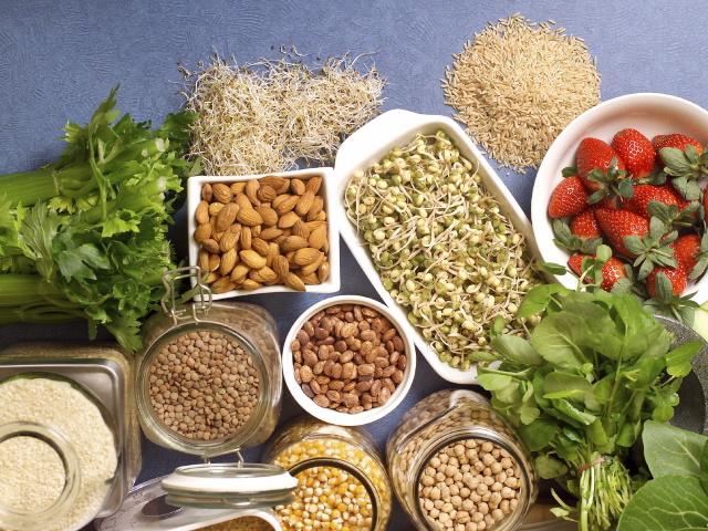 para-o-intestino-preso-emagrecer-fibra-solúvel-pó-frutas-ricas-dieta-proteínas
