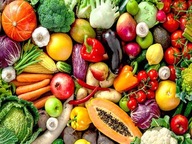 proteina-vegetal-ricas-legumes-o-que-são-fibras-vegetais